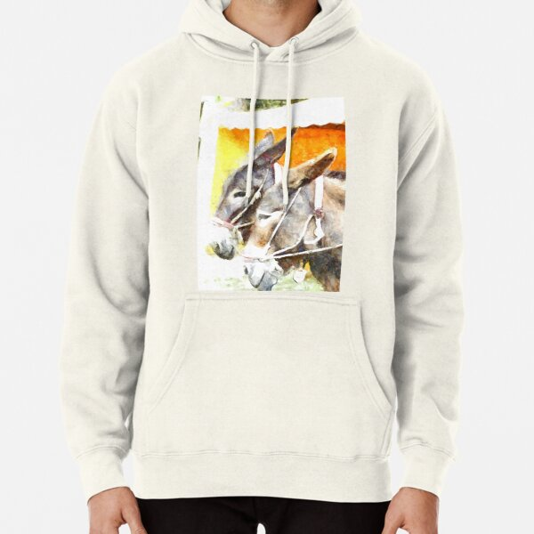 Muzzle of two donkeys Pullover Hoodie