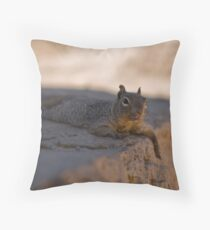 Nutz hiding in the shade Throw Pillow