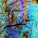 Nature Abstract by Marie Sharp