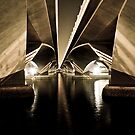 Under the Bridge and Dreaming: Two by deltagphoto