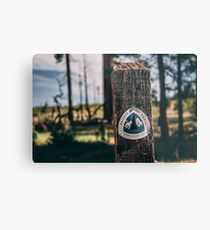 PCT Pacific Crest Trail sign Metal Print