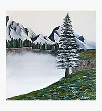 The Frozen Lake and the Lonely Pine Tree Photographic Print