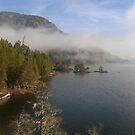 Gordon Bay Vista (Vancouver Island, British Columbia, Canada) by Edward A. Lentz