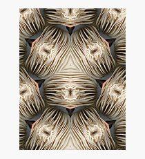 White Fungi altered image Photographic Print