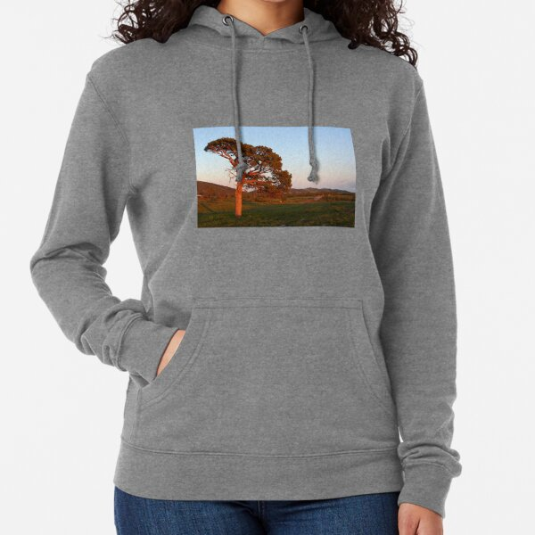 Lone tree at sunrise Lightweight Hoodie