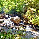Mountain Waterfall by Savannah Gibbs
