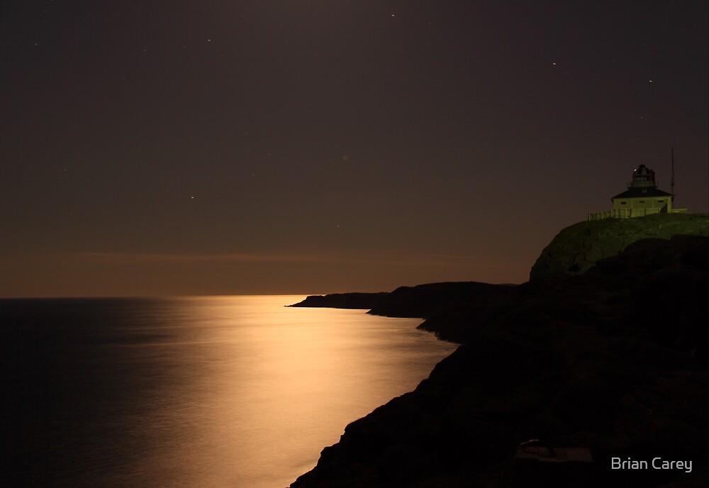Moonlight Serenade by Brian Carey