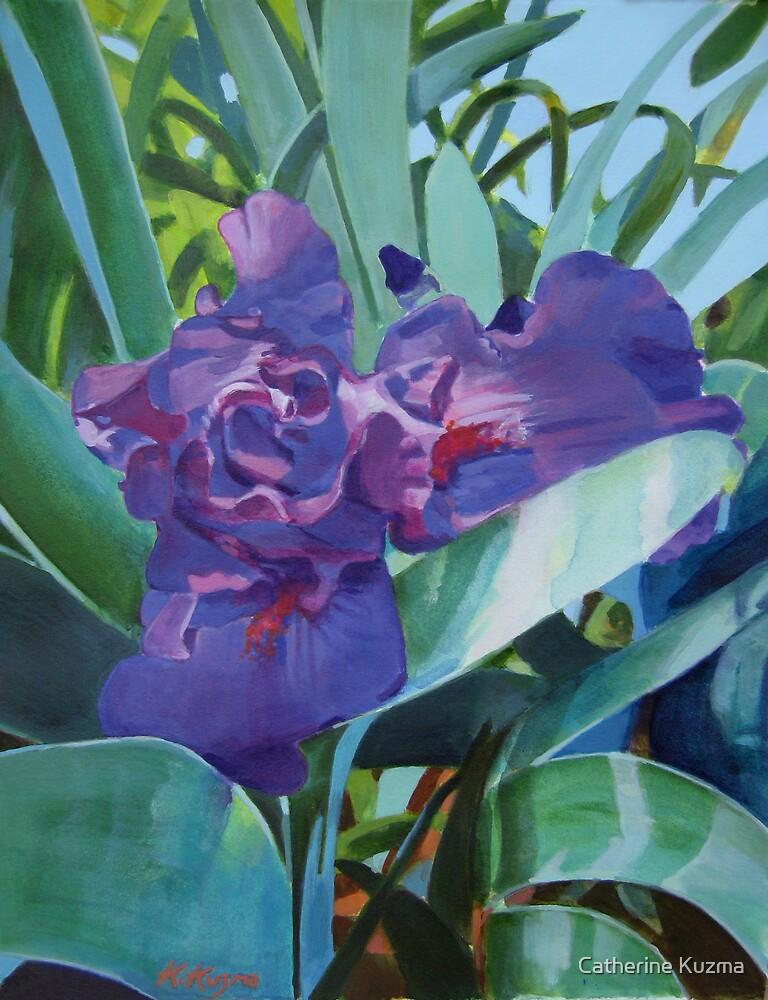 Purple Iris by Catherine Kuzma
