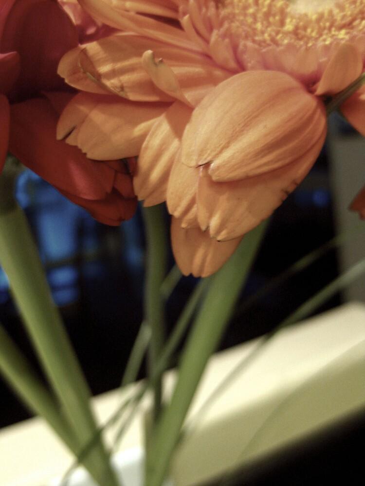 Flower 1 by Abigail Hiebert