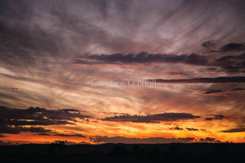 New Years Sunset by Candice O'Neill