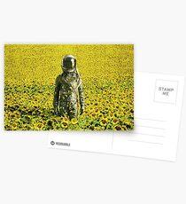 Gestrandet im Sonnenblumenfeld Postkarten