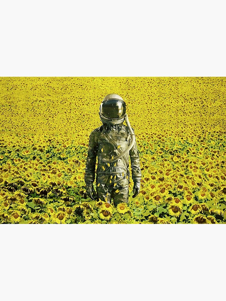 Stranded in the sunflower field by seamless