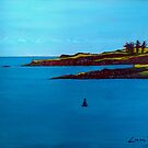 Long Point, Glandore Harbour (Cork, Ireland) by eolai