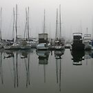 Foggy Reflections by Helen Phillips