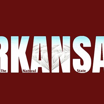 Arkansas License Plate by VsTheInternet