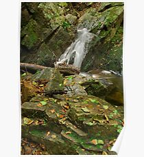 Autumn waterfall in Provence Poster