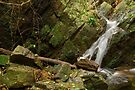 Provence waterfall by Patrick Morand
