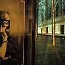 Metropolitan Musem Voyeur-New York Metropolitan Museum by milton ginos