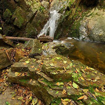 Autumn waterfall by patmo