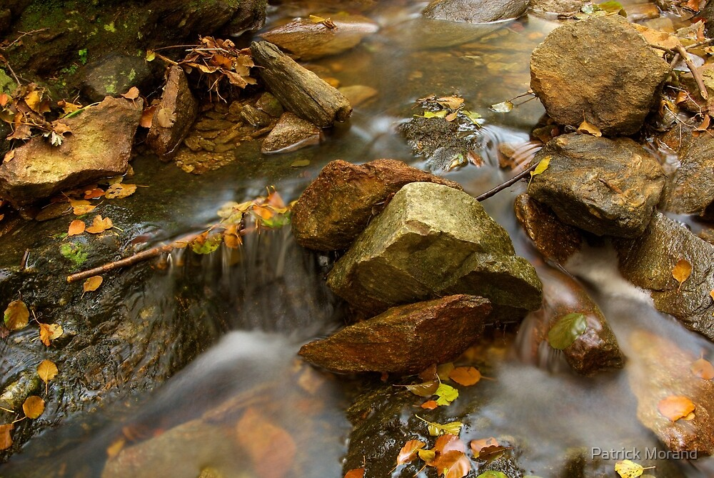 Autumn water by Patrick Morand