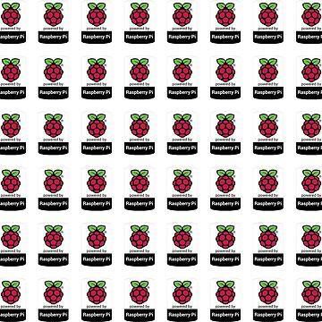 Raspberry Pi Case Sticker - 48 bulk set by Heath3827