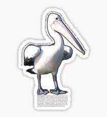 Yvette's lovely pelican! Sticker