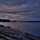 The Maine Coast by Theresa Wall Duggan