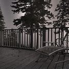 On the Deck by Theresa Wall Duggan