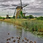 The Windmills at Kinderdijk by Lanis Rossi