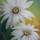 African Daisy by Woodie