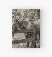 Equine Adoration Hardcover Journal