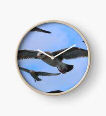 Many Seagulls Clock