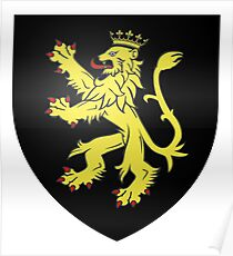 French France Coat of Arms 7365 Blason famille fr de la Taille variante  Poster