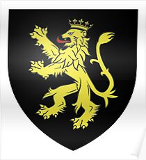 French France Coat of Arms 7367 Blason famille fr de la Taille Poster
