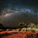 Spinifex and Stars by Steven  Lippis