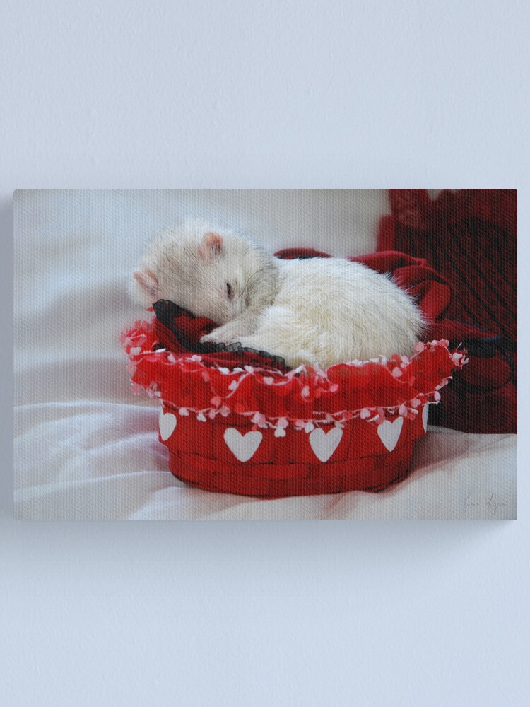 Alternate view of My Basket of Love Canvas Print