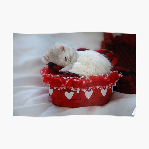 My Basket of Love Poster