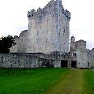 Blarney Castle by Dan Shiels