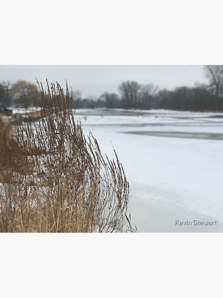 River bank by stewak21
