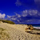 Dunes by HG. QualityPhotography