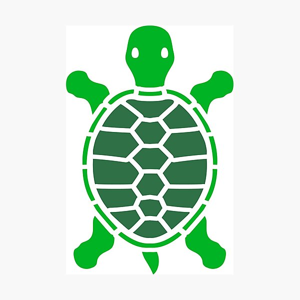 Turtle Comic Wall Art Redbubble