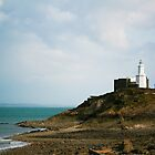 The Mumbles Lighthouse by Hannah Welbourn