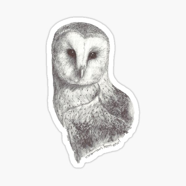 Uncommon Barn Owl Sticker