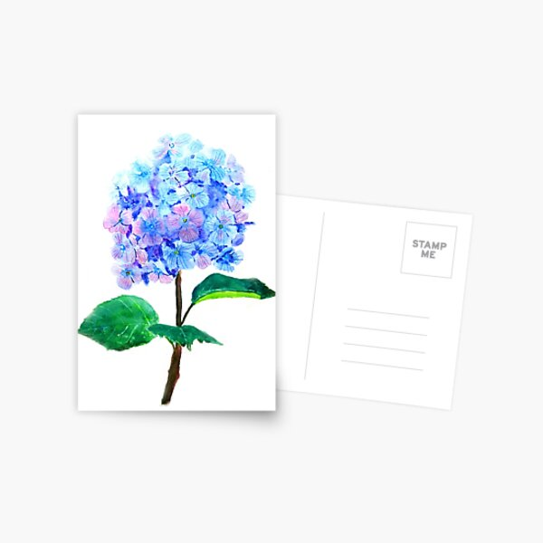 blue purple hydrangea flower  Postcard