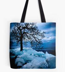 Retreating Ice Tote Bag