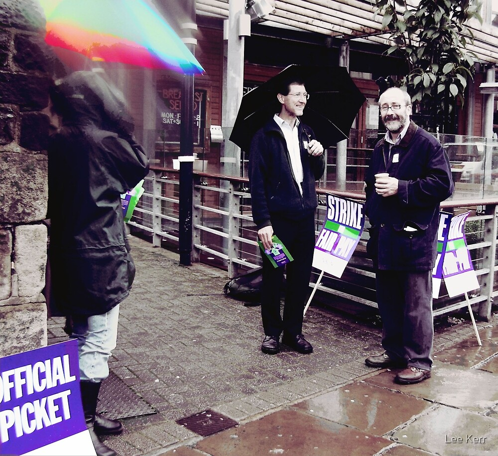 Sometime You Just Have to Picket by Lee Kerr