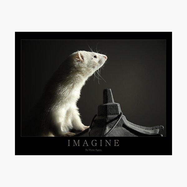 I M A G I N E Photographic Print