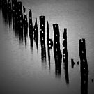 The Domino Effect.... by GerryMac