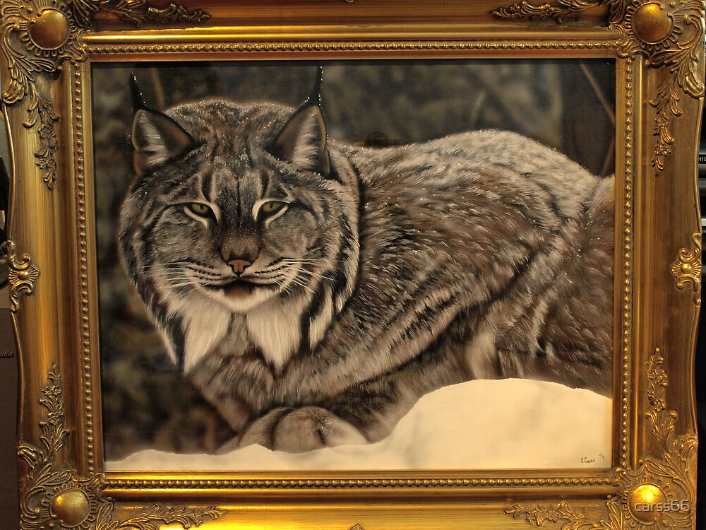 the missing lynx by carss66