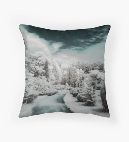 Erdotelek more...  (Infrared) Throw Pillow
